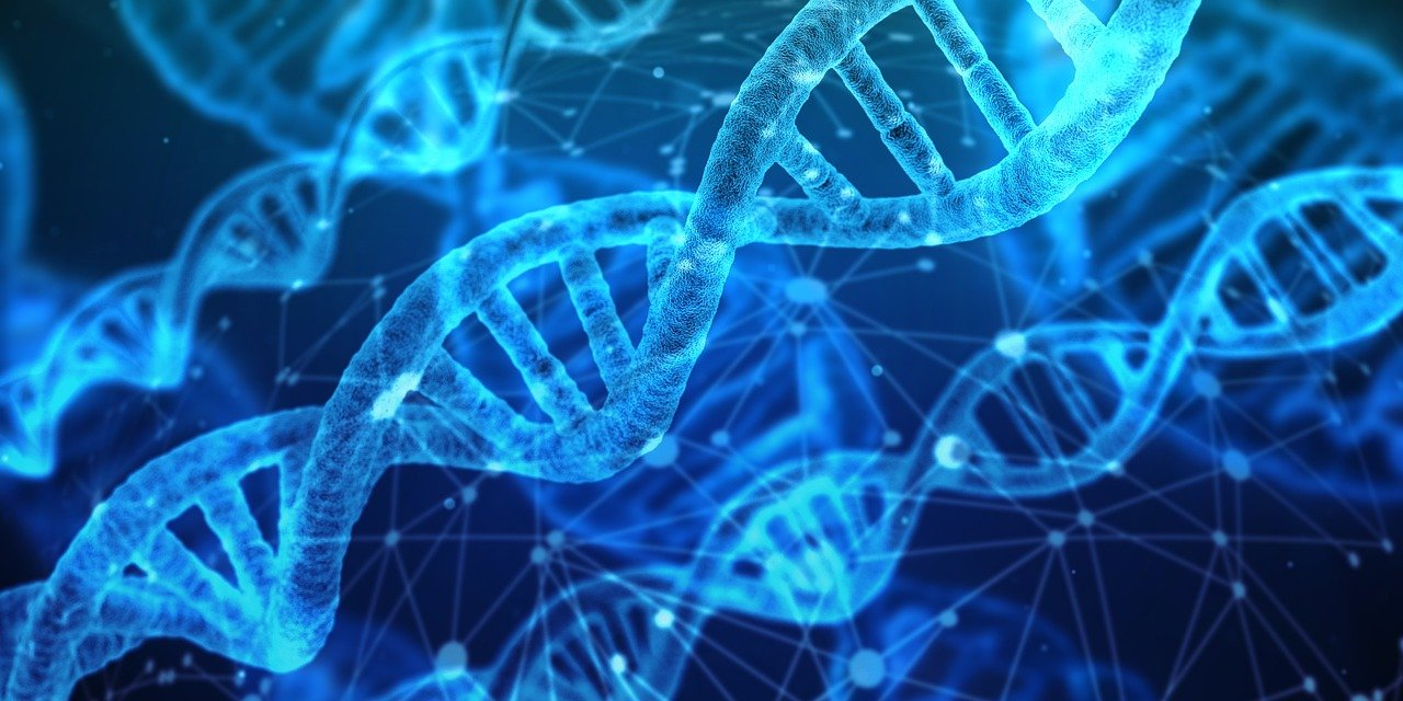 Mehrkomponenten Protein Test