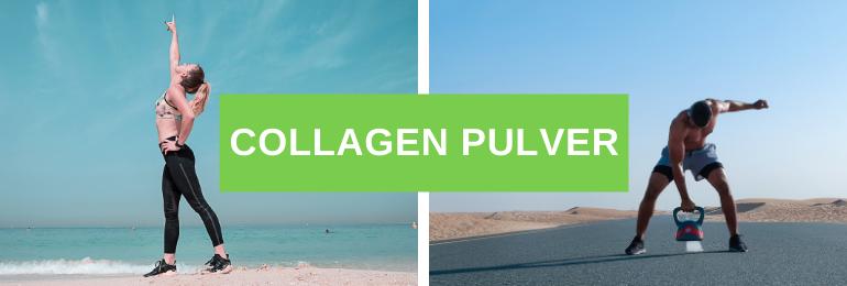 Collagen Pulver